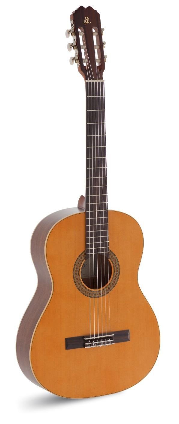 Granada Solid Cedar Guitar: Acoustic Guitar