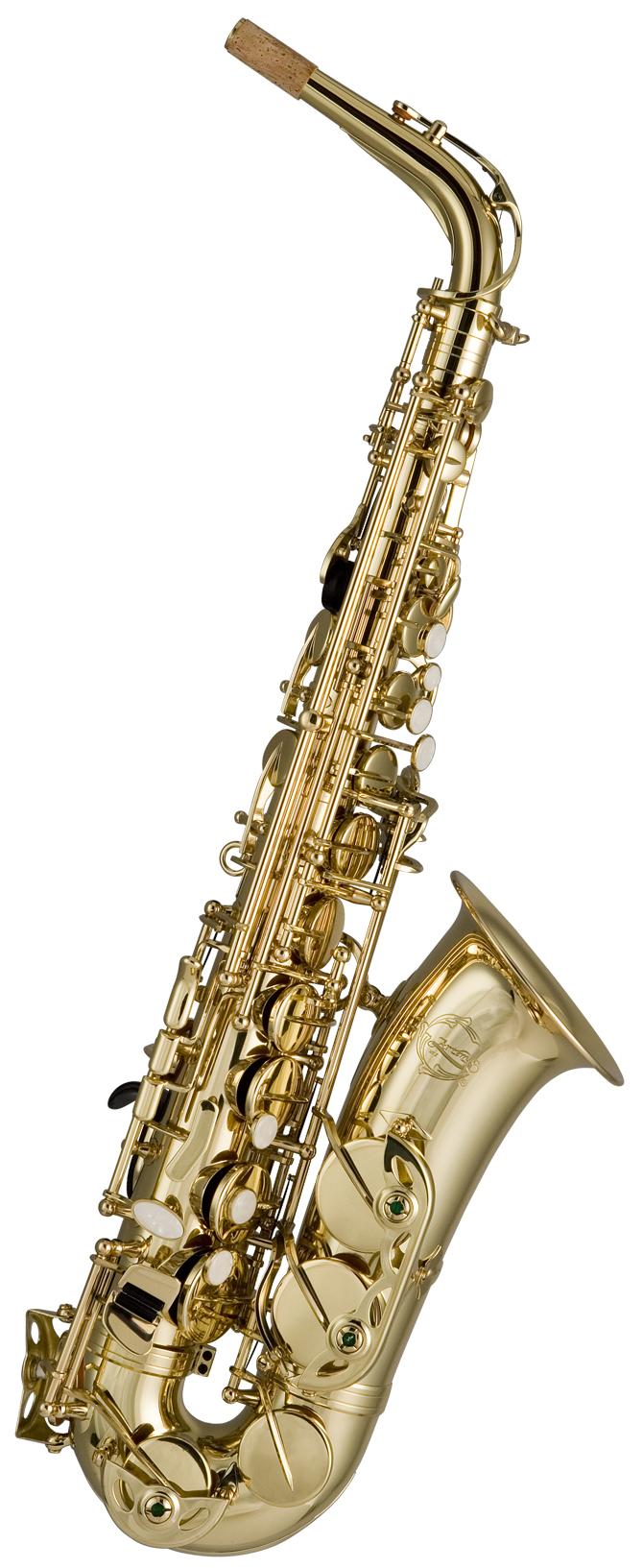 Alto Saxophone Gold Lacquer Outfit: Alto Saxophone