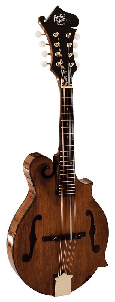 Mandolin Salvino Model: Mandolin