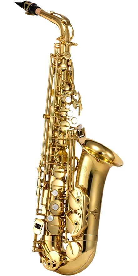 700 Series Eb Alto Sax Gold Lacquered: Alto Saxophone