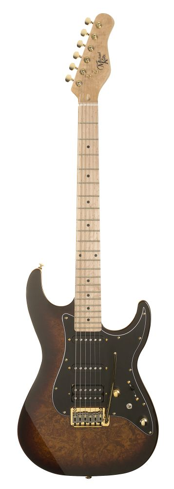 Michael Kelly: CC60 Electric Guitar: Electric Guitar