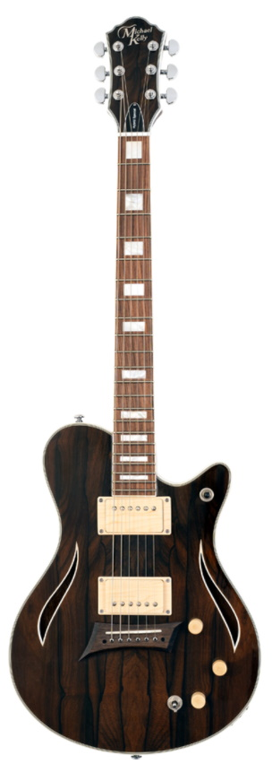Hybrid Special Electric Guitar: Electric Guitar