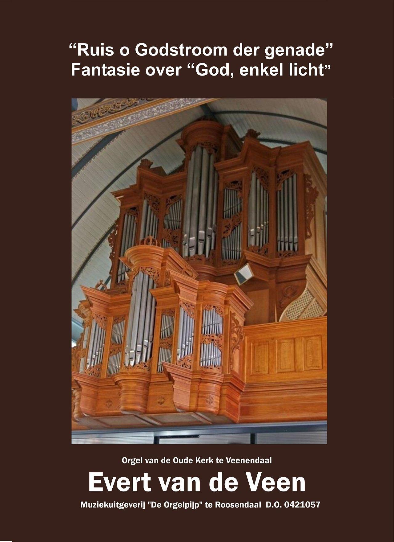 Evert van de Veen: Ruis o Godstroom: Organ: Instrumental Work